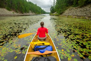 Woman canoeing in Temagami region, Ontario, Canada