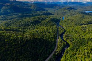 The road through the forest in the Adirondack Mountains