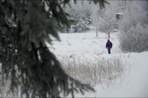 Sobotni spacer po lesie