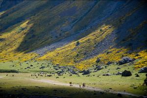 Hiszpania: Hiszpania – Pireneje szlak GR11 – Park Narodowy Ordesa