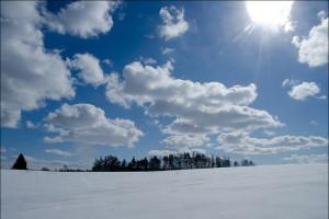 Biegówki..ostatnie podrygi zimy ! / Cross-country sking last gasp of winter