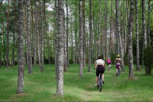 Sobotnia wycieczka rowerowa, czy to już lato czy jeszcze wiosna?