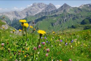 Liechtenstein – Duże góry w małym księstwie