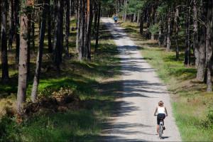 Dookoła Jeziora Wdzydzkiego na rowerach