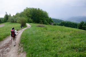 Główny Szlak Beskidzki – Przełęcz Knurowska do Krościenka
