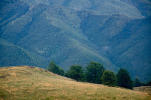 Rumunia – Spacerem po górach Maramuresz
