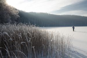 Biegówki nad jeziorem Przywidzkim