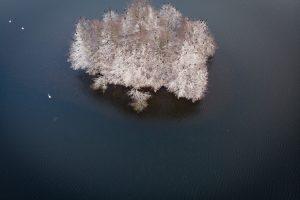 Tajemnicza wyspa na jednym z jezior