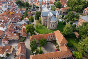 Dania – Viborg